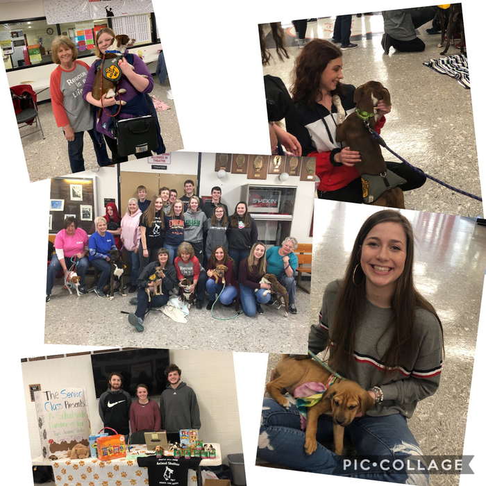 Thanks TAPS for kicking off our fundraiser with bringing their animals to share with us!  Thank you!