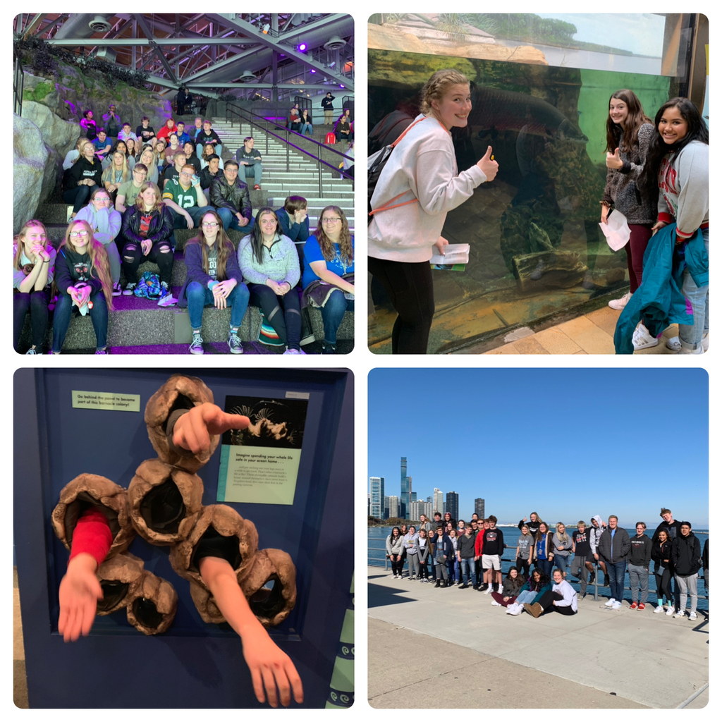 Zoology enjoyed a beautiful day in Chicago visiting the Shedd Aquarium and Field Museum.