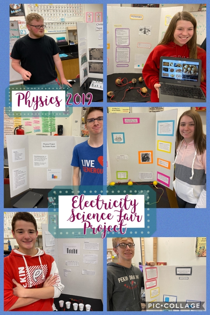 Physics 1/2 Electricity Science Fair Project