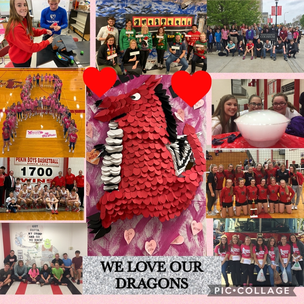We Love Our Dragons! #dragonpride